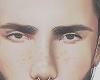 Anibel brows