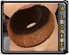 *AK* Donut ~Choco Dipped