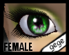 [GG]Female Eyes 5