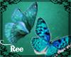 -ȵ- Teal Butterfly Enha