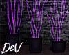 !D Neon Plants