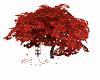 Maple Tree & Swing