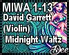 Violin: Midnight Waltz