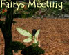 Fairys meeting place