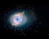 Neon Rosette Nebula