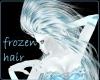 [ML]Frozen Hair