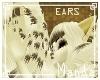 .M. Steamy Ears