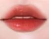 Bibir LIP