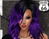 SD Isabell Black Purple