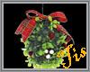 (Tis) Mistletoe - Male