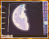 Ѧ; Galaxy Room