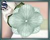 [S]Add-On Flower 02