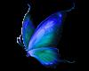 ~SB Butterfly 3