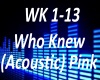 B.F Who Knew (Acoustic)