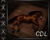 !C* W Horse Picture