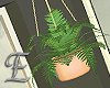 -E- Hanging Plant