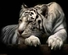 white tiger sofabed