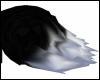 [V] Black&White Tail