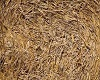 REAL STRAW BALE