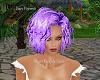 PP|Short Purple Hair