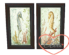 Framed Pictures Seahorse