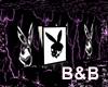 ~H~Bunny Star Club
