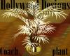 Coach Plant