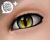 IMVU+ M Eye Cat 0