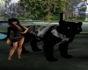 giant panther pet