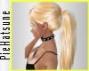 ~P; Gomez Blonde