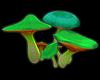 Glovin Green Mushrooms