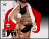 D- Legend Santa's Gloves