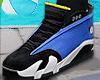 Jordan 14's