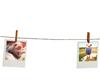 Hanging-Photos-Line