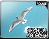|2' Seagull Animate*