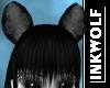 Bear Ears D/MF