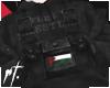 ¤ palestine