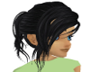 Black Hair Ponytail