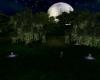 CD Purple Moonlit Vows