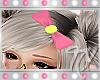 !TX - Smiles Bow