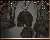 [Ry] Rocks and plants