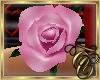 TC~ Single Pink Rose