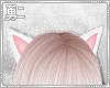 Y' White Neko Ears