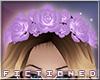 F' Flower Crown Purple