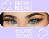 bl brows T2 V2 Ɛ>
