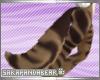 [S] Tegra tail v2