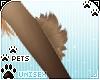 [Pets] Kimi | arm tuft