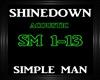 Shinedown~Simple Man