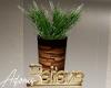 Deco Patio Plant (a)
