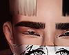 Phili brows